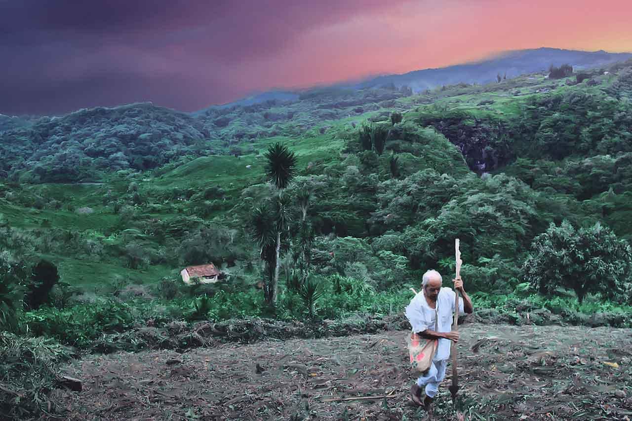 tierra mia documental Pedro González-Rubio